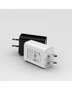 US 10W 2A Travel Wall Charger